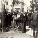 Otwarcie Instytutu Radowego, 1932r. Maria Skłodowska - Curie sadzi jedno z sześciu pamiątkowych drzew w ogrodzie Instytutu